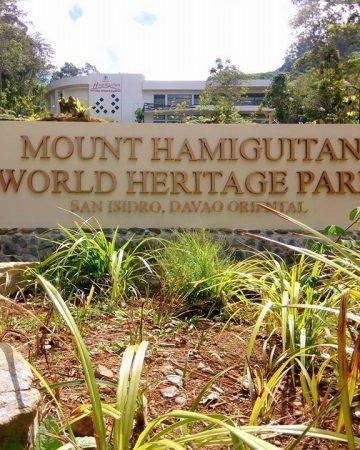 【観光】世界遺産、ダバオ地方の秘境、ハミギタン山地野生生物保護区 Mount Hamiguitan Range Wildlife Sanctuary